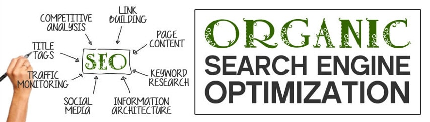 organic-search-marketing-3