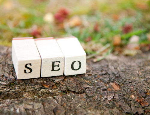 How Organic SEO Services Will Protect You From Google's Updates