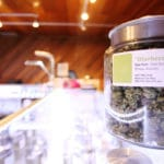 Cannabis Dispensary Marketing: Let Your Strain Stand Out